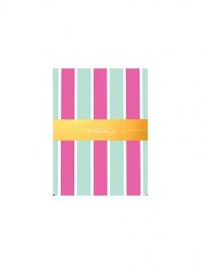 Aqua Stripes - Pocket Notes