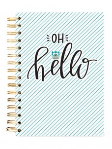 Hello Owl -HARD COVER JOURNAL